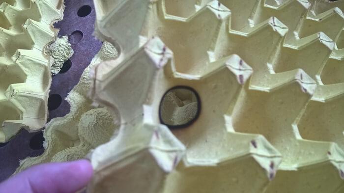 burned hole on egg tray